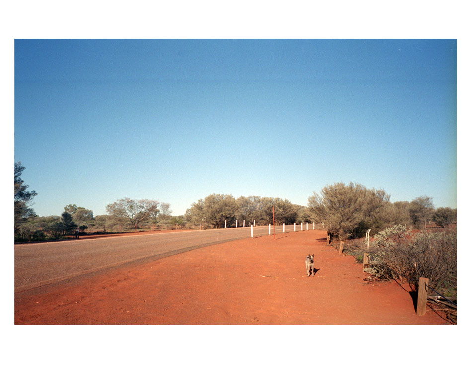 /fr/artwork/photography/705/me-and-the-dog-australian-desert