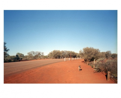 Me and the dog, Australian desert